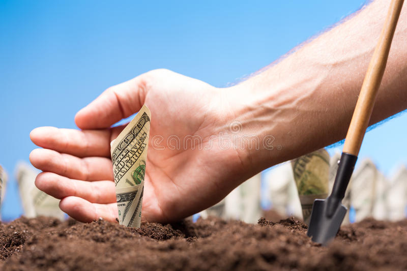 American dollars grow from the ground royalty free stock photography