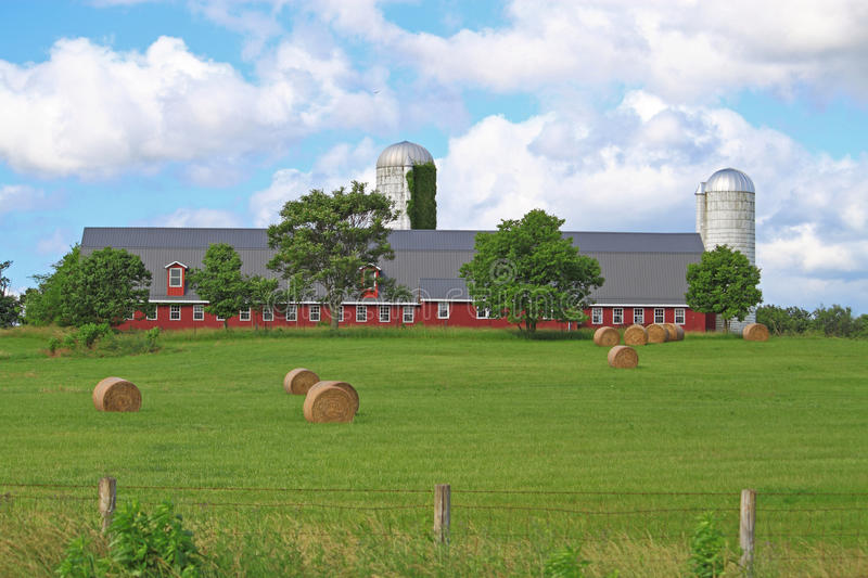 American Red Farm stock image