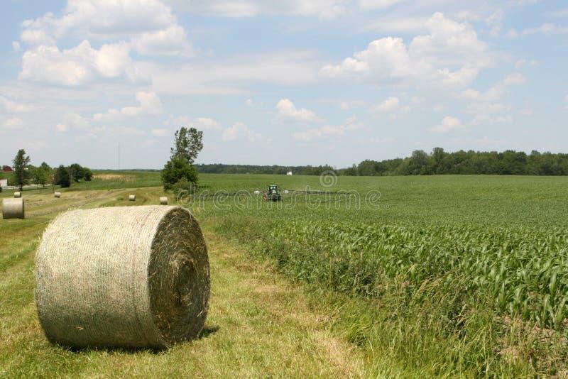 American Farming royalty free stock photo