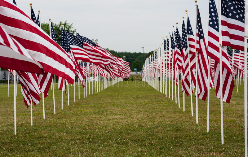 American Field of Flags on Memorial Day. A Field of American Flags in a field on Memorial Day stock photos