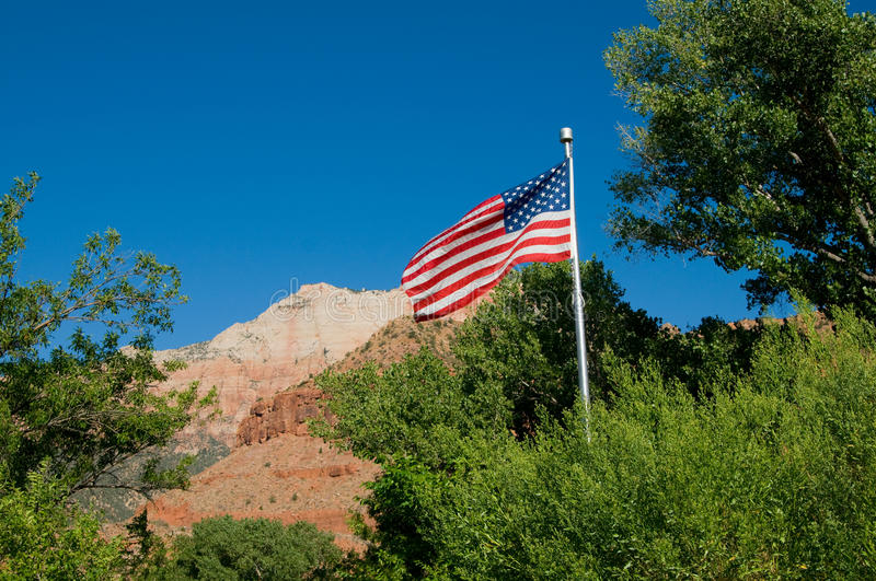 Download American Flag stock photo. Image of freedom, brown, nature - 11365596