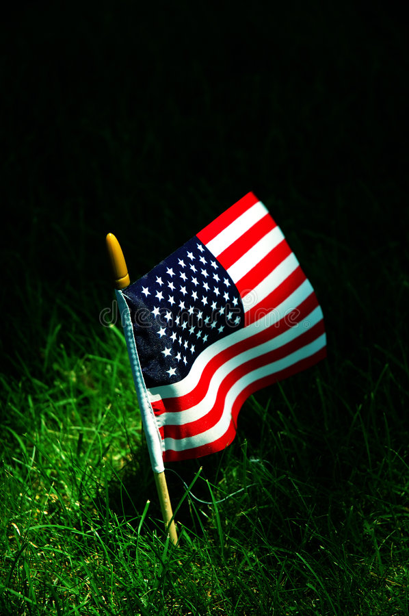American flag. On green grass stock photography