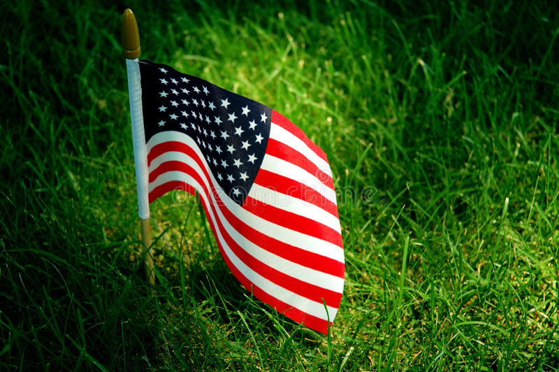 American flag. On green grass royalty free stock photos