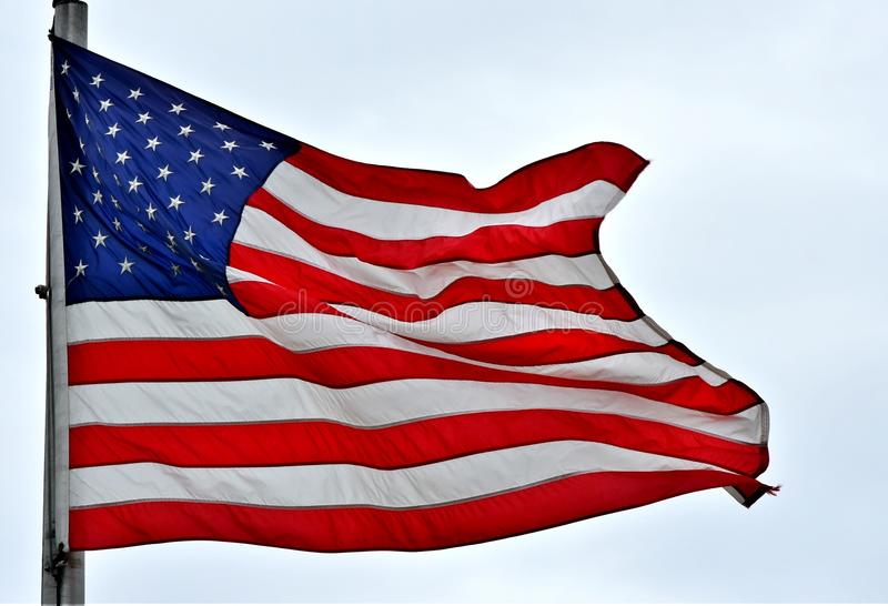 American Flag. Waving in the breeze stock images