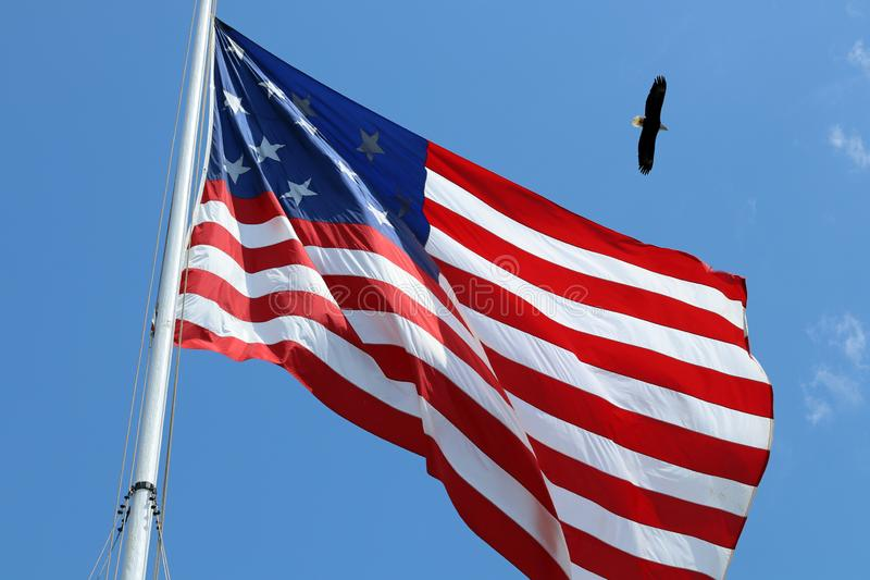 American flag and bald eagle stock photo