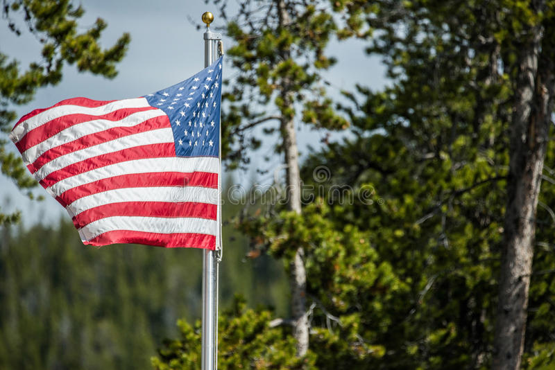 American flag blowing in wind in forest of national park stock images