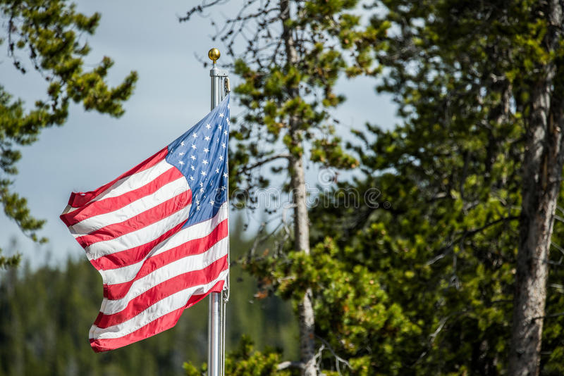 American flag blowing in wind in forest of national park royalty free stock photo