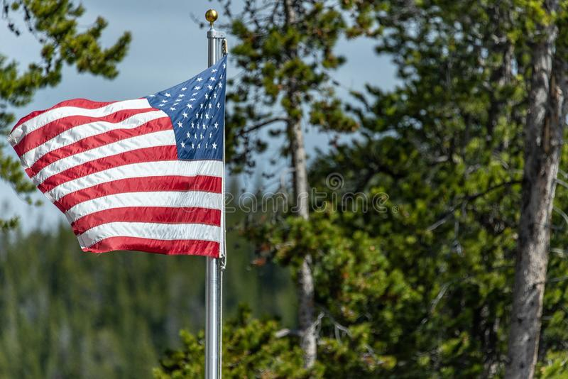 American Flag. Blowing in the wind with spring summer foliage background of trees - red white and blue - stars and stripes stock photos