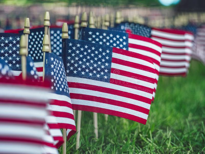 American Flag Day. At the park stock images