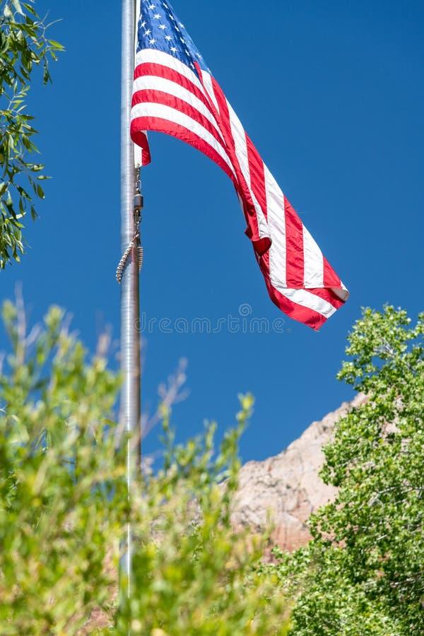 American flag framed by National park landscape vegetation and m stock photography