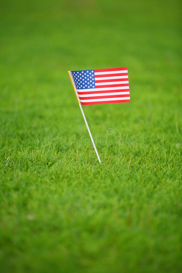 American Flag On Grass Royalty Free Stock Photos