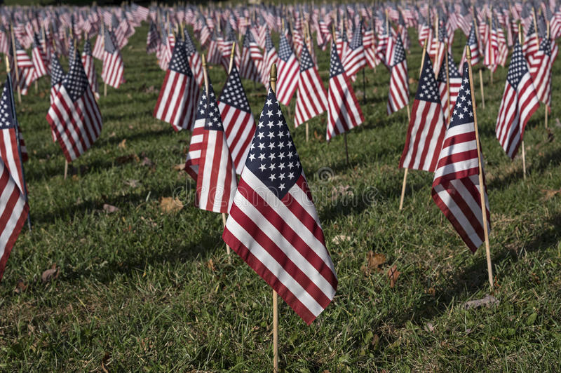 American Flag. In a sea of flags honoring Veterans that gave their lives for country royalty free stock images
