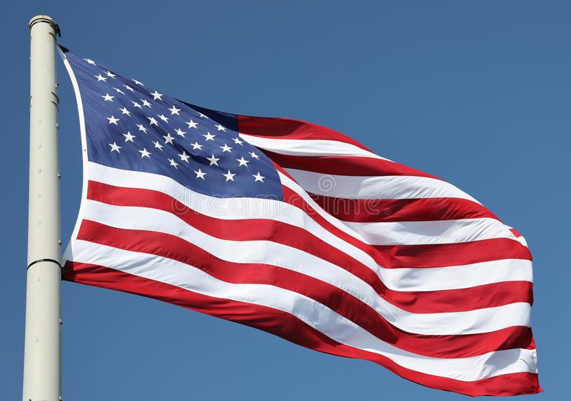 The American Flag in the wind royalty free stock image
