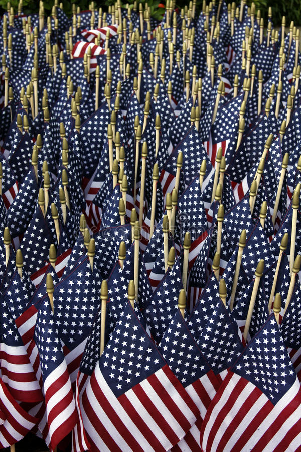Free American Flags Stock Image - 10221091