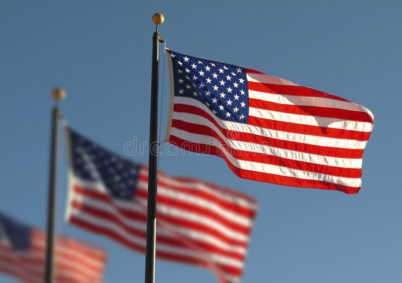 American flags royalty free stock images