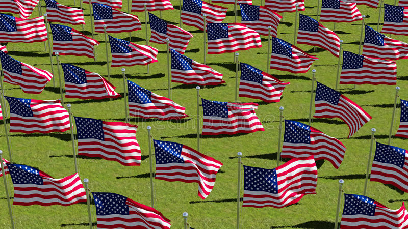 American flags on display for Memorial Day stock illustration