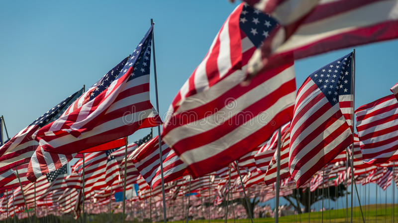 American Flags. Hundreds of American Flags flying stock images