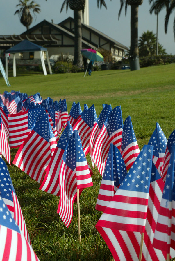 Free American Flags In A Park Royalty Free Stock Image - 815866
