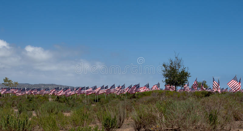 American flags. Memorial Day, Independence Day and Veterans Day. Celebration in USA royalty free stock photography