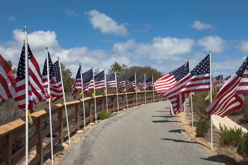 American flags. Memorial Day, Independence Day and Veterans Day. Celebration in USA stock images