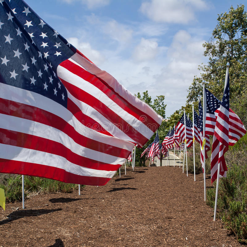 American flags. Memorial Day, Independence Day and Veterans Day. Celebration in USA royalty free stock photo