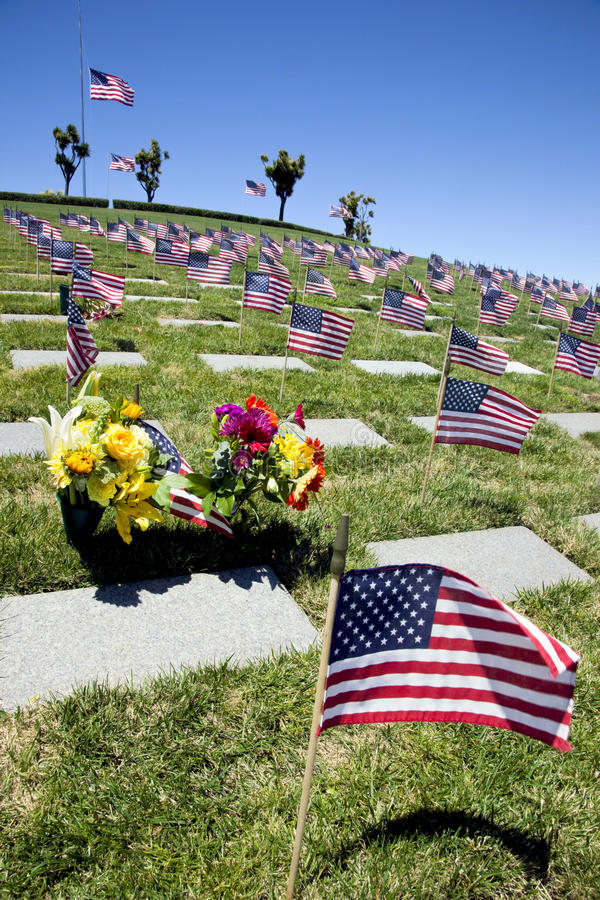 American Flags at National Cemetery stock images