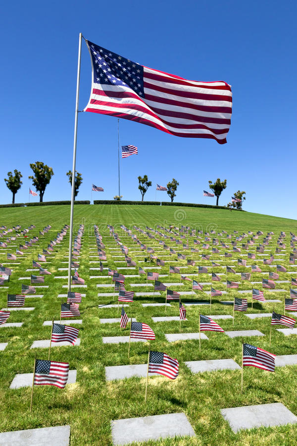 American Flags at National Cemetery royalty free stock image