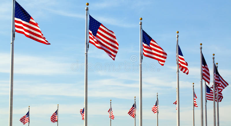 American Flags. Row of American Flags against blue sky stock photos