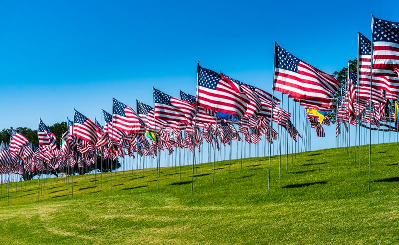 American Flags in the Wind. Captured in California on a national Holiday. Awesome Shot of a lot of Flags royalty free stock images