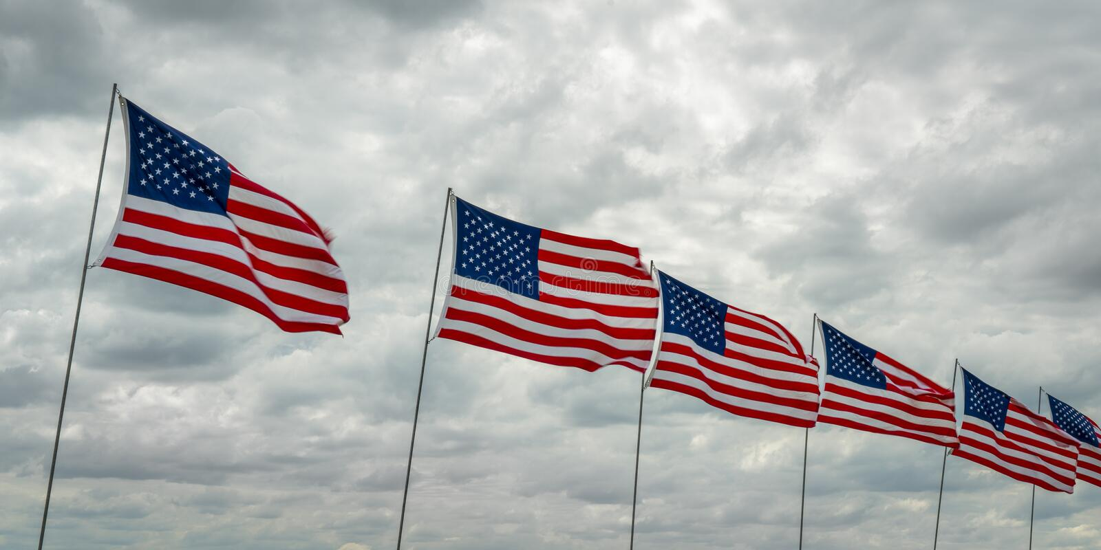 American flags in wind. Memorial Day celebration - a  row of American flags on a rural cemetery stock images