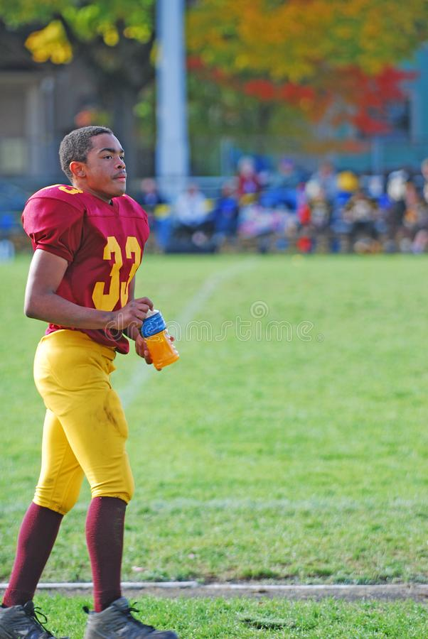 Download American Football Player stock image. Image of strong - 15202707