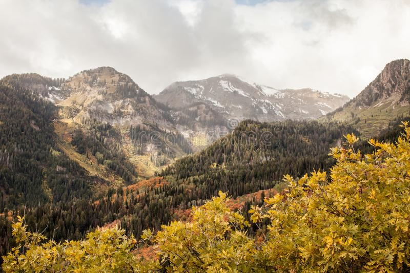American Fork Canyon trail royalty free stock photography