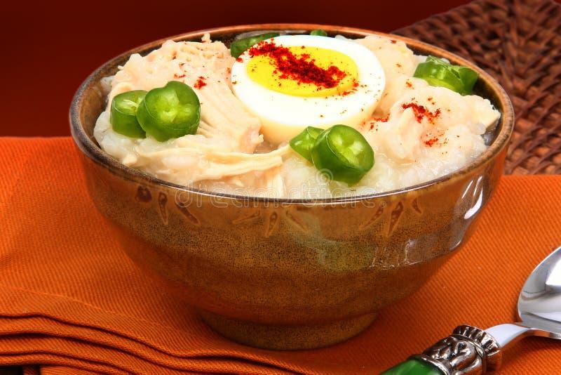 Download American Korean Style Dukjuk Chicken Porridge Stock Photo - Image: 28095874