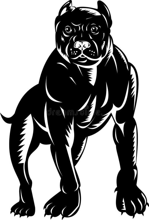 American Pit Bull Terrier vector illustration