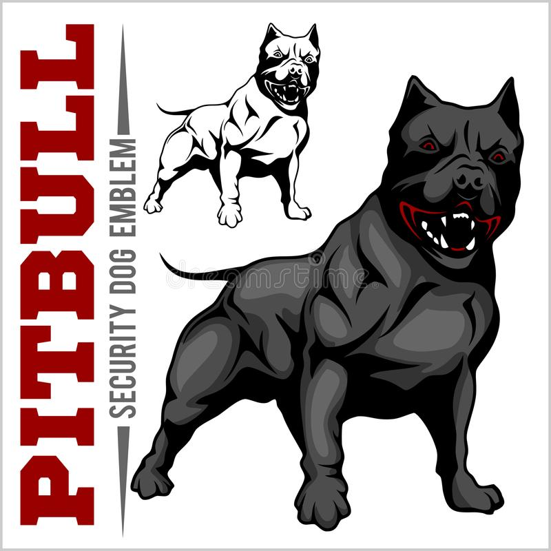 American Pit Bull Terrier, Pitbull. royalty free illustration