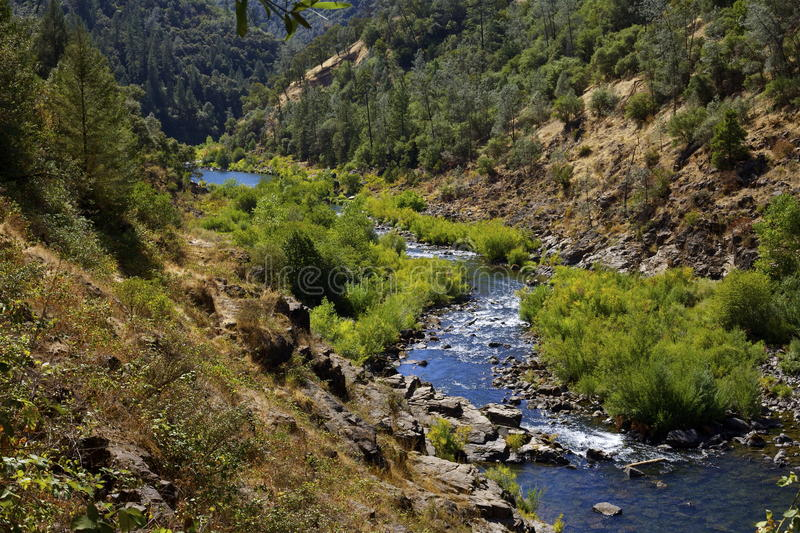 American River Nature Scene royalty free stock photos