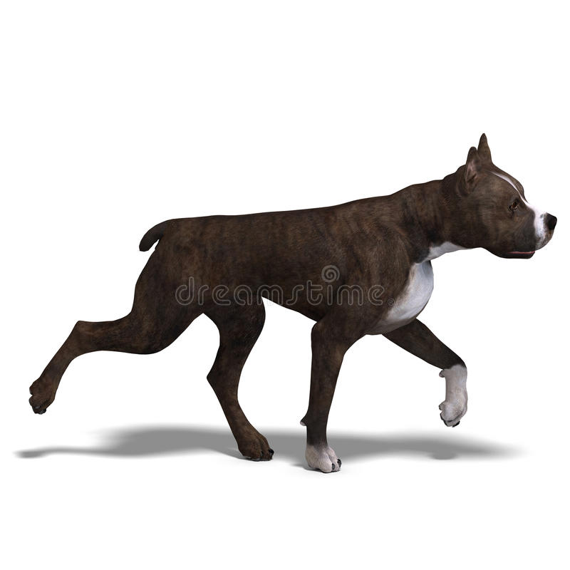 American Staffordshire Terrier Dog. 3D rendering