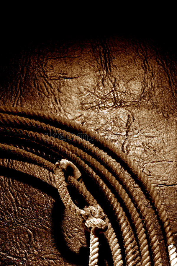 Free American West Rodeo Cowboy Lariat Lasso Background Stock Photography - 2955002