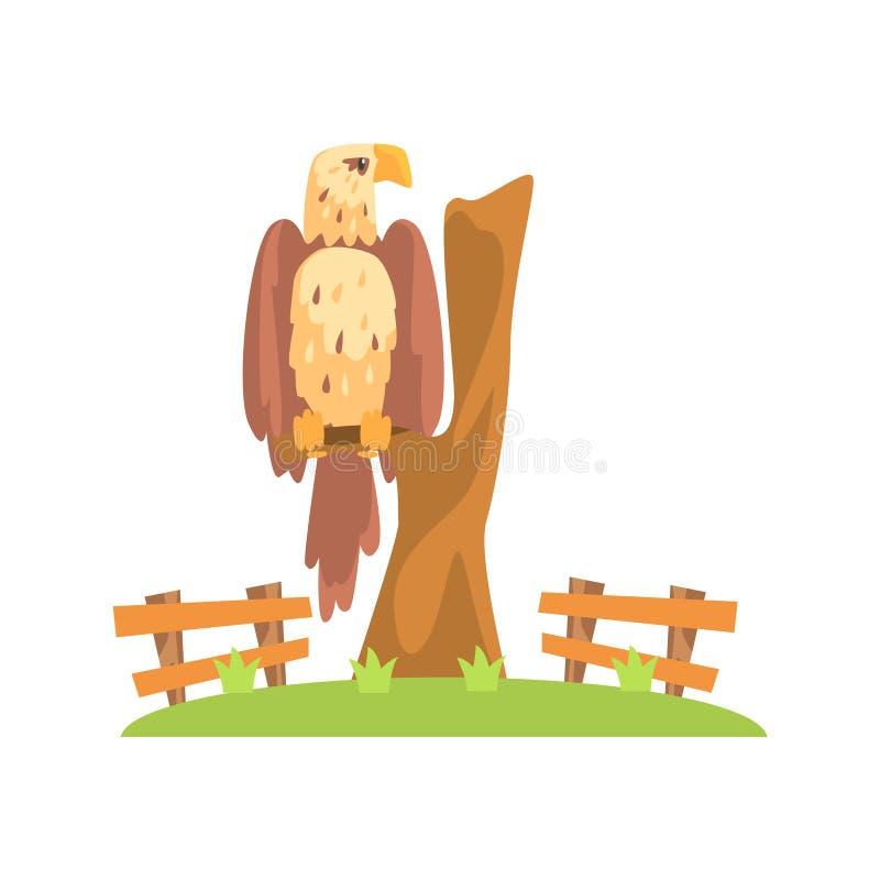 Americano calvo Eagle Sitting On Tree Branch no cerco do jardim zoológico do ar livre ilustração stock