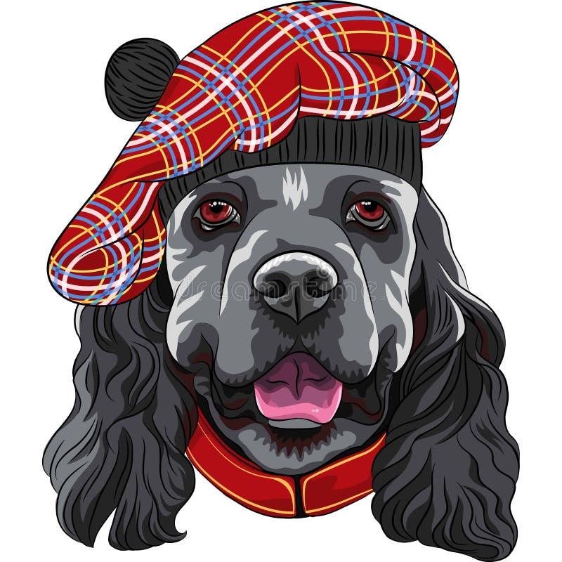 Americano cocker spaniel do cão do vetor no Scottish Tam ilustração royalty free