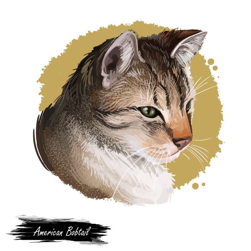 Amerikaans Bobtail zeer stevig en ongewoon ras, binnenlands huisdier Kat die op witte achtergrond wordt ge?soleerd? Digitale kuns vector illustratie