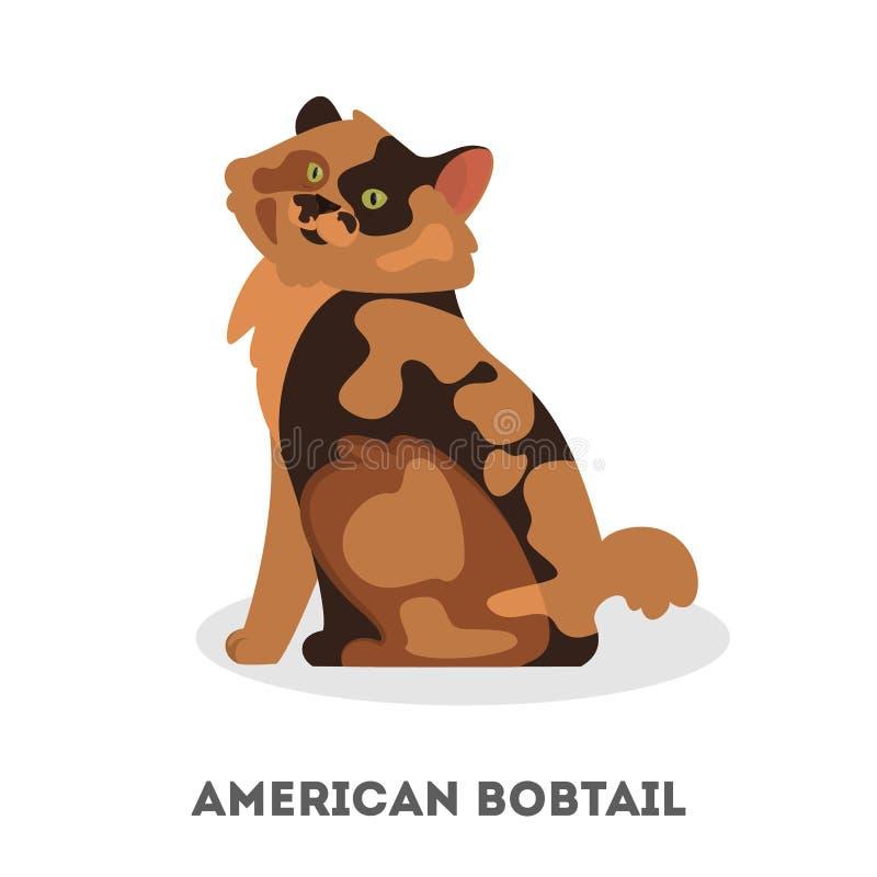 Amerikaans bobtailras Een mooie leuke kat royalty-vrije illustratie