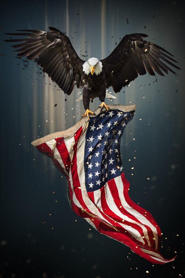 Amerikaans Kaal Eagle die met Vlag vliegen