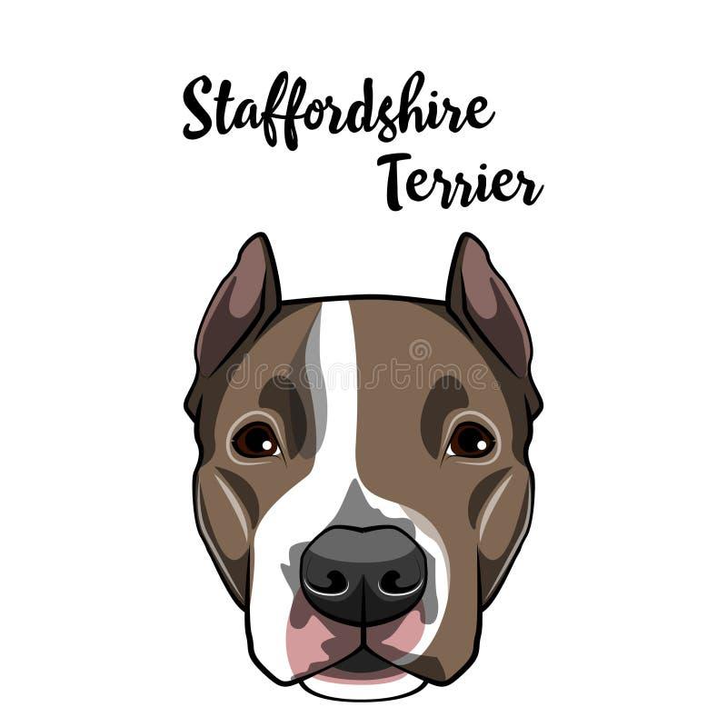 Amerikaans Staffordshire Terrier hondgezicht Hond hoofdsnuit Hondras Vector vector illustratie