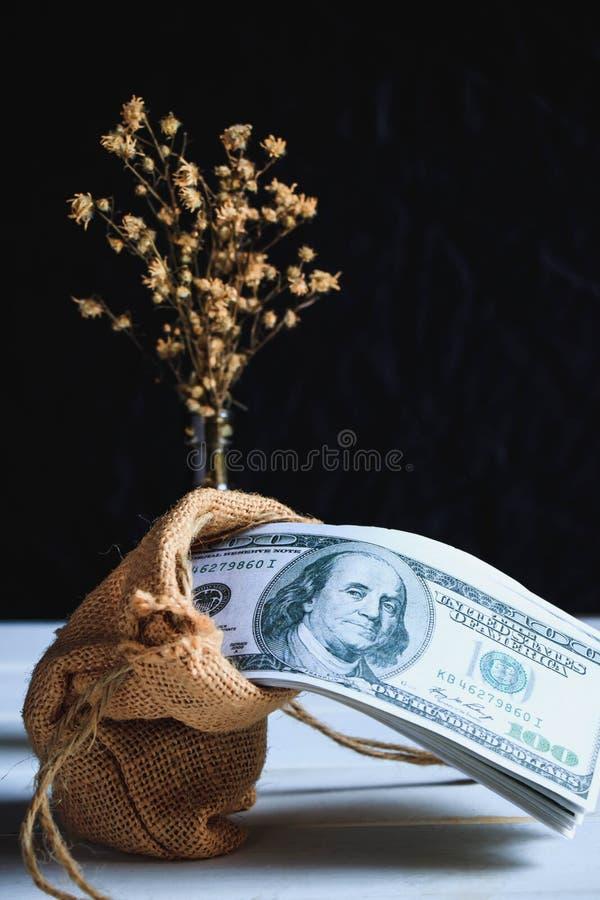 Amerikaanse dollarbankbiljetten stock afbeelding