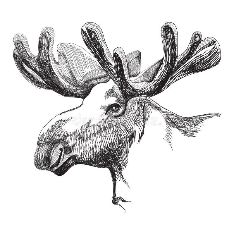 Amerikaanse elandenhoofd in grafische stijl vector illustratie