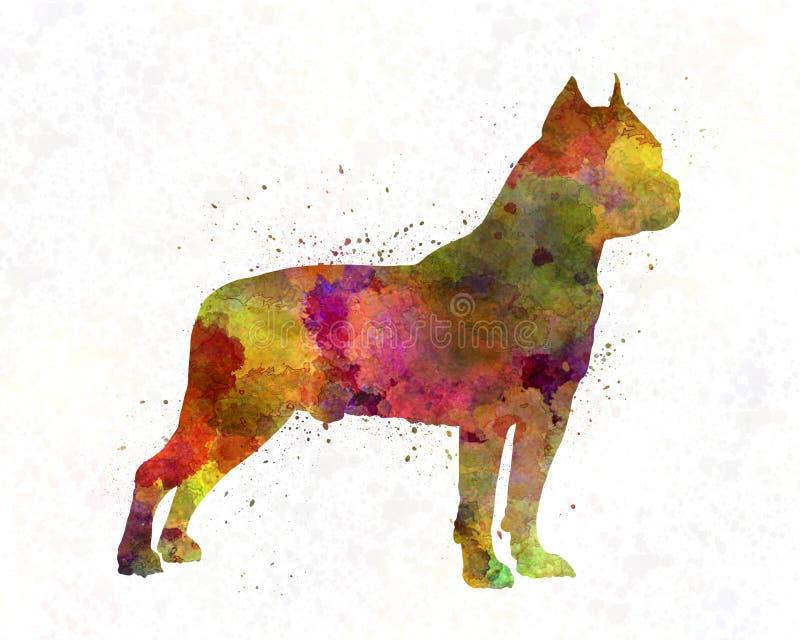 Amerikaanse Staffordshire Terrier in waterverf vector illustratie