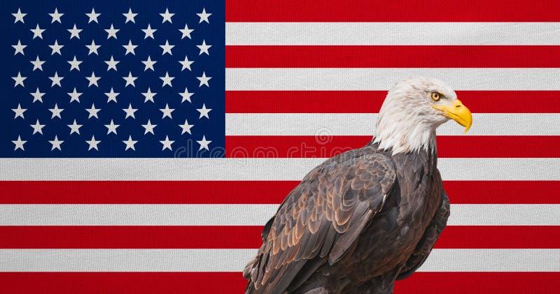 Amerikaanse vlag, Kaal Eagle, nationale symbolen van de V.S. stock afbeelding