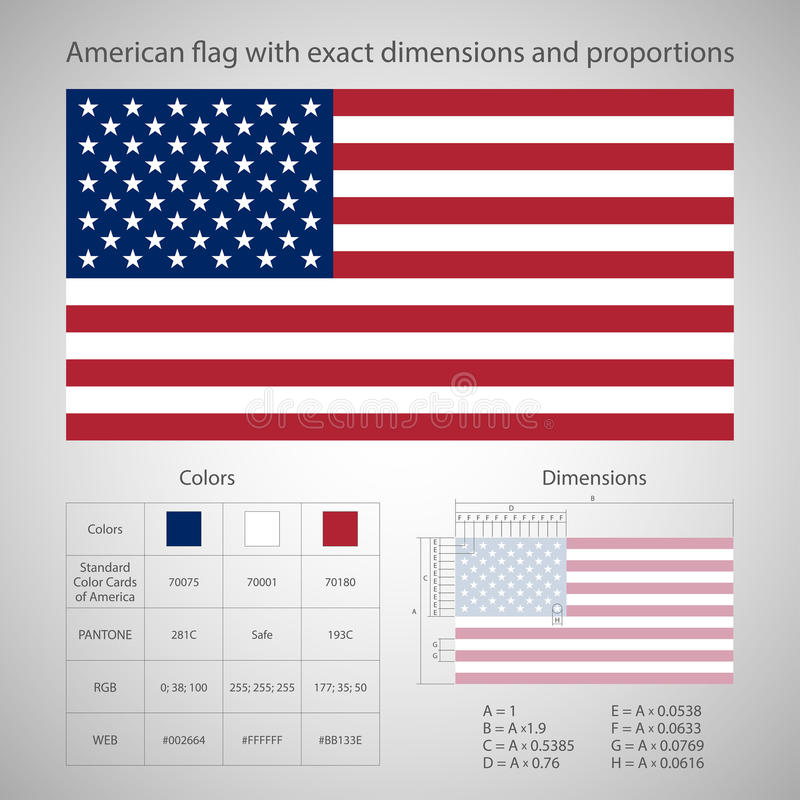 Amerikaanse vlag met nauwkeurige afmetingen vector illustratie