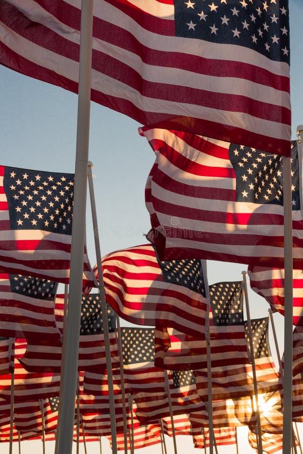 Amerikaanse vlaggen die bij zonsondergang golven royalty-vrije stock foto